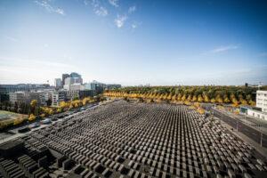 Stelenfeld von oben, Okt. 2020, Foto Marko Priske